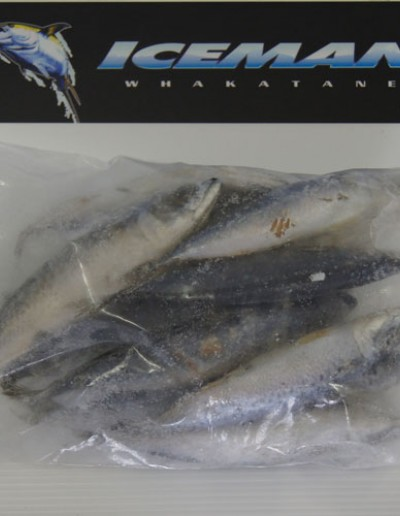 Baby Mackerel Pack