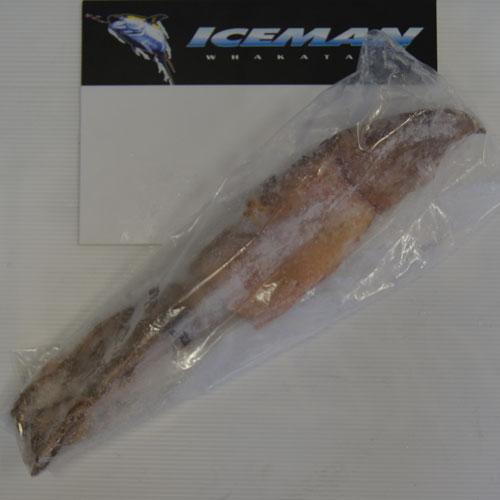 XXL Squid